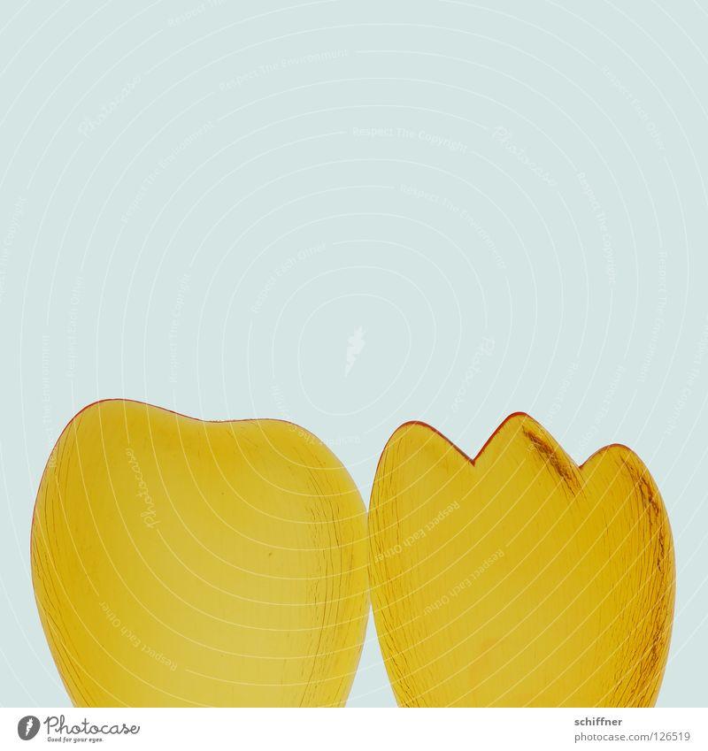Donald Ducks Klumpfuß gelb Frühling Fuß rund Ostern Verschiedenheit Gegenteil Zehen eckig Zacken Salatbesteck
