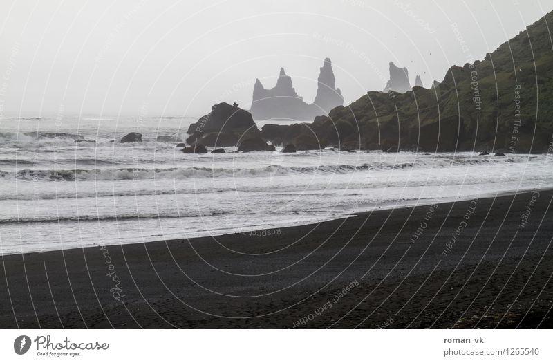 Godzilla beim Schnorcheln Umwelt Natur Landschaft Urelemente Erde Sand Wasser Horizont schlechtes Wetter Nebel Moos Strand Fjord Stein ästhetisch bedrohlich