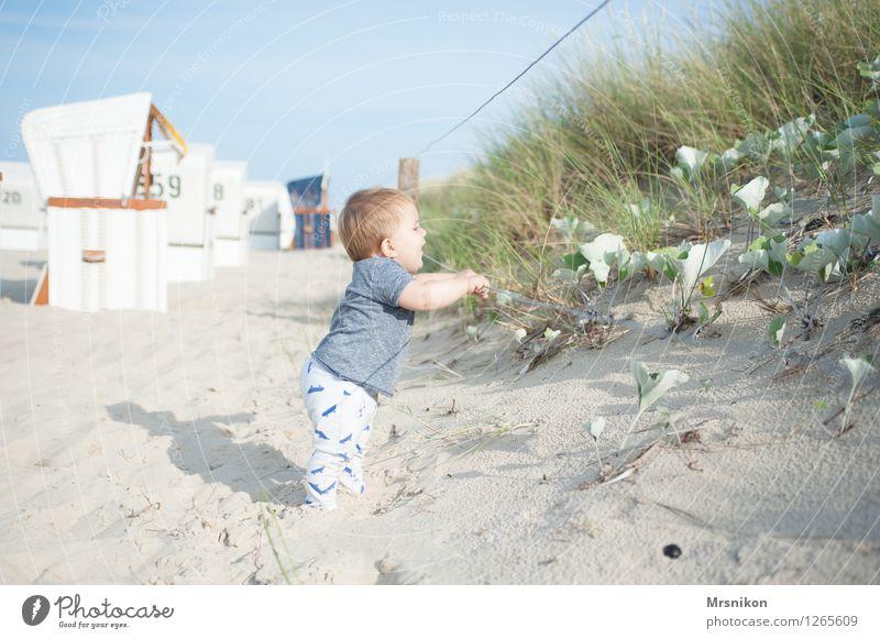 düne Baby Kleinkind Junge Familie & Verwandtschaft Kindheit Leben 1 Mensch 0-12 Monate Sand Wolkenloser Himmel Sommer Schönes Wetter Küste Strand Ostsee Meer