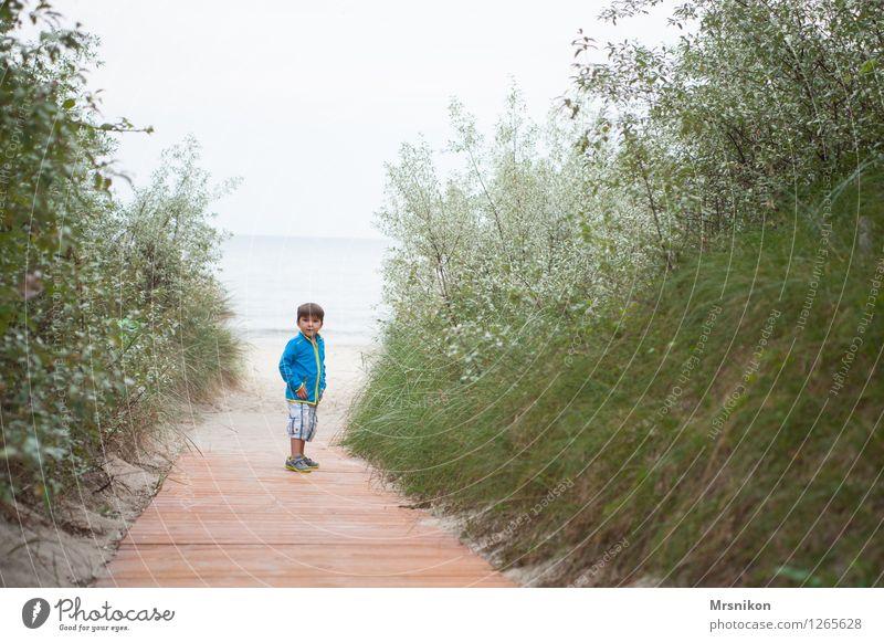 auf dem Weg Ferien & Urlaub & Reisen Ausflug Abenteuer Sommer Sommerurlaub Strand Meer Kind Junge Kindheit Leben 1 Mensch 3-8 Jahre beobachten rennen Blick