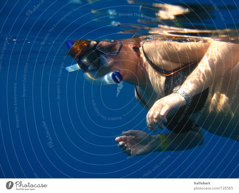 Malediven Water 12 Wasser Meer tauchen Wassersport Riff Schnorcheln Sport