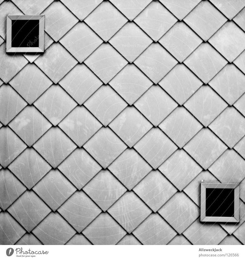 symmetria Wand Fassade Fassadenverkleidung Gebäude grau silber Fenster Quadrat Luke Haus Design Symmetrie Detailaufnahme Architektur Maske gebäudehülle