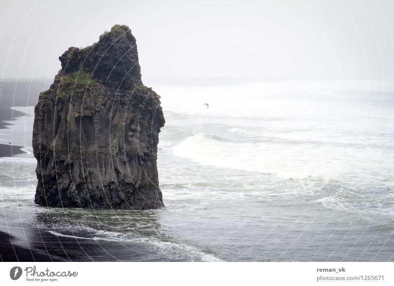 Wellenbrecher Natur alt Wasser Meer Landschaft Strand kalt Umwelt Traurigkeit Küste Stimmung Felsen Regen wild Nebel