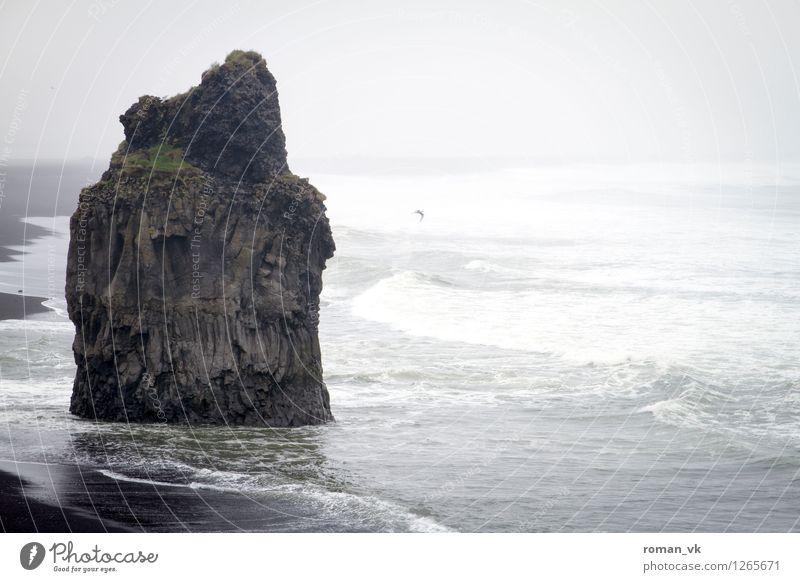 Wellenbrecher Natur Landschaft Urelemente Erde Wasser schlechtes Wetter Wind Nebel Regen Felsen Küste Strand Fjord alt maritim trist wild Stimmung Kraft Stolz