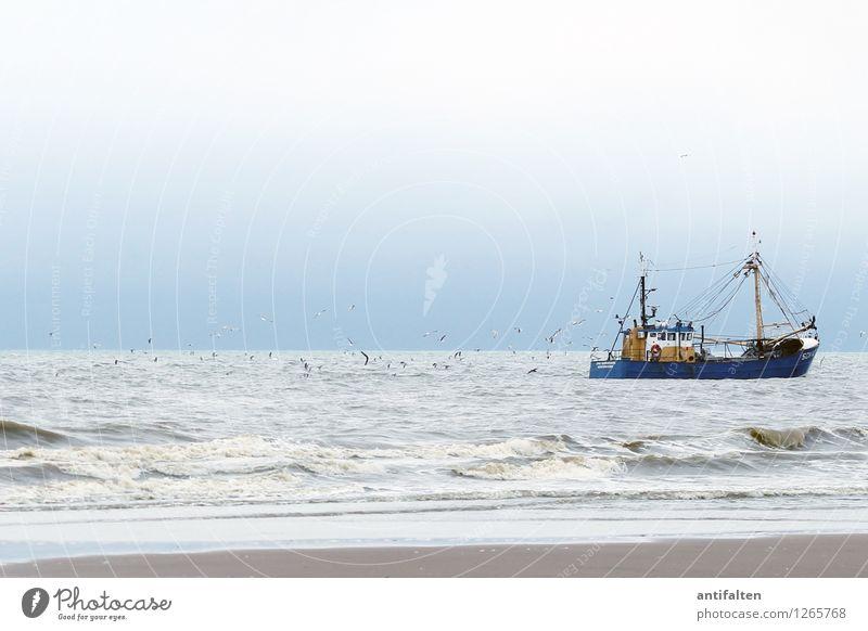 Schiff Ahoi Natur Ferien & Urlaub & Reisen Sommer Wasser Meer Ferne Strand Küste Freiheit Lifestyle Sand Tourismus Wetter Wellen Wind Abenteuer