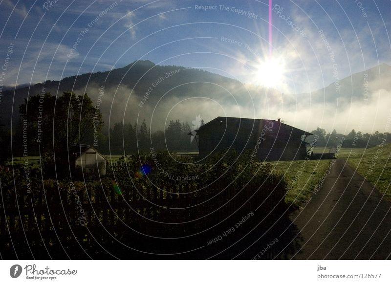 guten Morgen! Sonnenaufgang Sonnenstrahlen Physik frisch Nebel Bodennebel Morgennebel Scheune grün gelb Schweiz Saanenland Wärme Straße Garten Berge u. Gebirge
