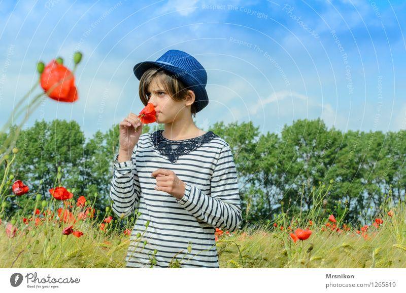 mohnfeld Kind Mädchen Kindheit Jugendliche 1 Mensch 8-13 Jahre stehen träumen Mohn Mohnblüte Mohnfeld Feld Feldfrüchte Hut Strohhut Geruch Duft pflücken brünett