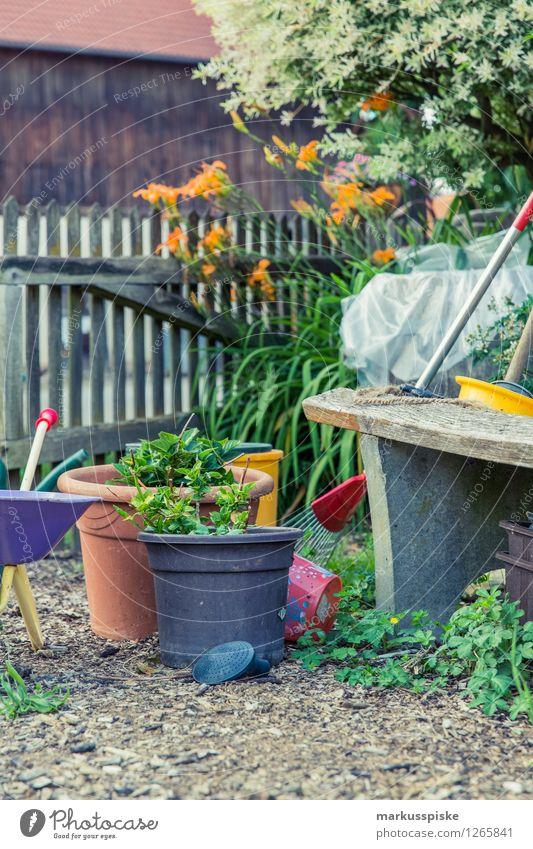 aufzucht urban gardening Pflanze Erholung Gesunde Ernährung Haus Leben Garten Lifestyle Lebensmittel Wohnung Freizeit & Hobby Häusliches Leben Gemüse Wohlgefühl