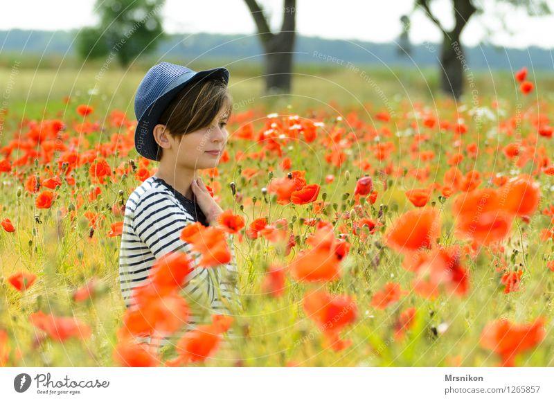 mohnfeld Mensch feminin Mädchen Kindheit Jugendliche 1 8-13 Jahre Natur Landschaft Pflanze Schönes Wetter Wiese Feld schön Mohn Mohnfeld Mohnblüte Blühend Hut