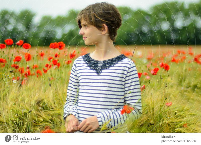 mohnfeld Mädchen Kindheit Jugendliche Leben 1 Mensch 8-13 Jahre Sommer Feld Blühend Blick stehen fantastisch frei Glück Unendlichkeit Mohn Mohnblüte Feldfrüchte