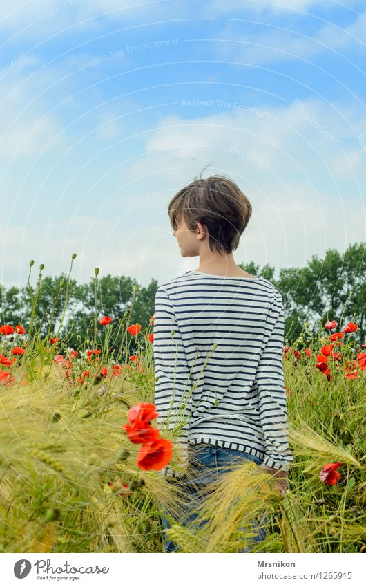 im Feld feminin Mädchen Kindheit Jugendliche Leben Rücken 1 Mensch 8-13 Jahre Natur Pflanze Tier Schönes Wetter Wiese schön mädchenhaft Mädchenhaare