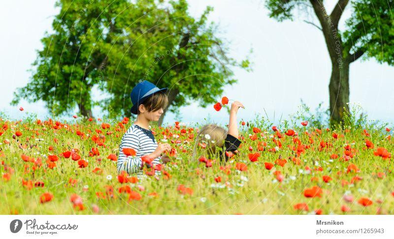 folgt mir feminin Kind Mädchen Geschwister Schwester Kindheit Jugendliche Leben 2 Mensch Kindergruppe 3-8 Jahre 8-13 Jahre mädchenhaft folgend Hut Strohhut Mohn