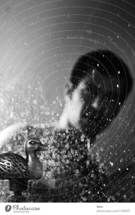 Self mit Spiegel und Wasserente Spiegelei Wasserhahn Porträt Ente dreckig