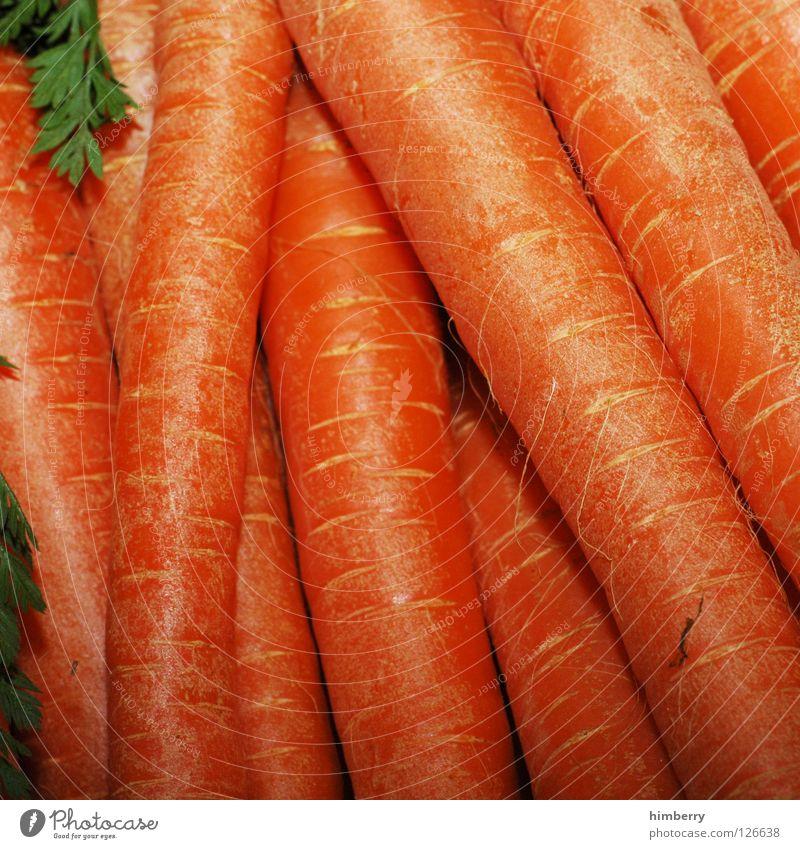 möhrchencase Gesundheit orange Lebensmittel Ernährung Kochen & Garen & Backen Gemüse Vitamin Möhre Vegetarische Ernährung Rohkost