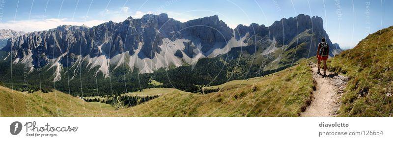 Der Berg ruft Natur Sonne Sommer Landschaft Wiese Berge u. Gebirge Gras wandern groß Aktion Klettern Italien Gipfel Fußweg Panorama (Bildformat) Pflanze