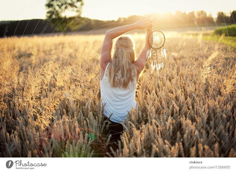 Lichtfänger Mensch feminin Junge Frau Jugendliche Erwachsene 1 18-30 Jahre 30-45 Jahre Umwelt Natur Landschaft Sommer Schönes Wetter Wärme Feld leuchten träumen