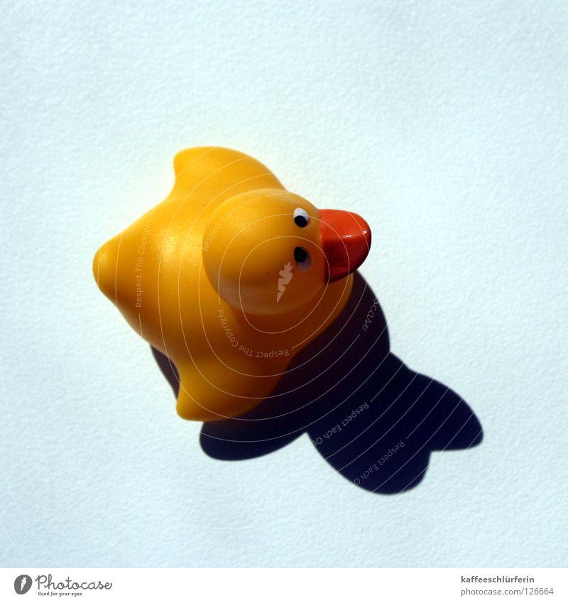 High Noon. blau gelb Perspektive Dekoration & Verzierung Ente Badeente Spielzeug