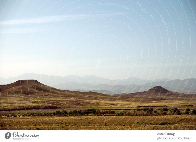 kahles Hügelland Umwelt Natur Landschaft Sand Himmel Horizont Sommer Wetter Schönes Wetter Pflanze Sträucher Berge u. Gebirge Atlas Gipfel Wüste Marokko hoch