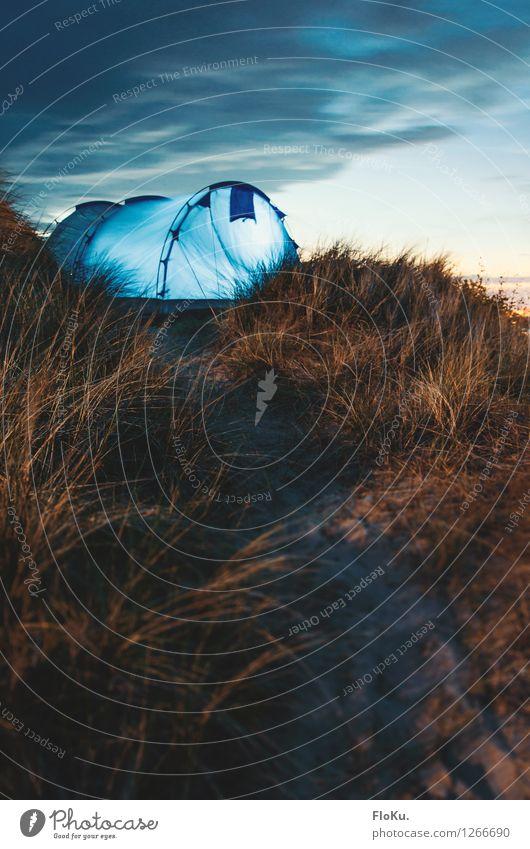 Campen in den Dünen von Sylt Himmel Natur Ferien & Urlaub & Reisen blau Pflanze Sommer Landschaft Wolken Strand Umwelt Gras Küste Freiheit Sand orange Tourismus