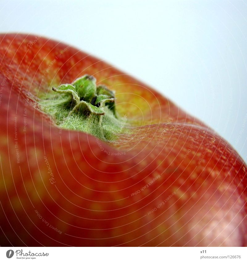 Apple IV Natur grün rot gelb Ernährung Gesundheit Frucht Haut Stern (Symbol) süß rund Apfel Wut Glätte saftig Vitamin