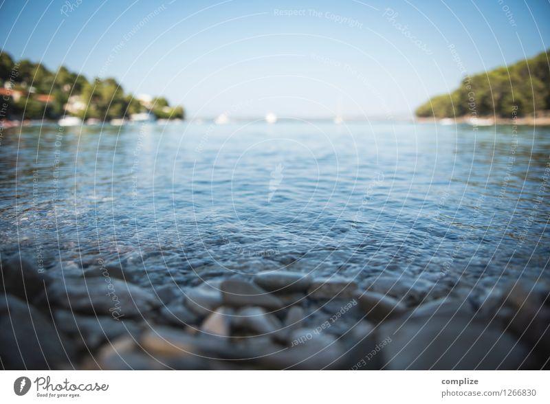 Kroatische Bucht Himmel Ferien & Urlaub & Reisen blau Pflanze Sommer Wasser Sonne Erholung Meer ruhig Ferne Strand Umwelt Küste Freiheit Schwimmen & Baden