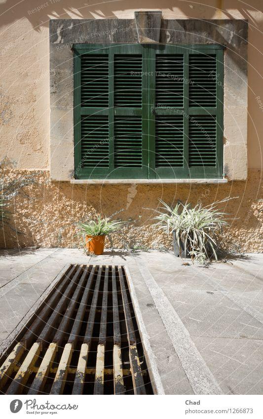 Lamellen Ferien & Urlaub & Reisen Tourismus Haus Fenster Fensterladen Pflanze Topfpflanze Menschenleer Stein Holz Metall Häusliches Leben außergewöhnlich grün