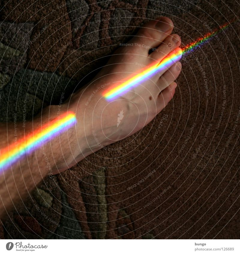 gradus in lucem Zehen Teppich Regenbogen Muster mehrfarbig regenbogenfarben Spektralfarbe weiß Licht rot gelb Gefäße Mann Behaarung schön Haus Raum