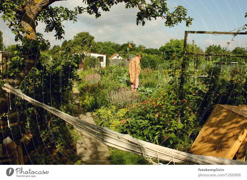 garten_königin 1 Gesunde Ernährung Garten Junge Frau Jugendliche Mensch Pflanze Sommer Schönes Wetter Gemüsegarten Schrebergarten Kleingartenkolonie natürlich
