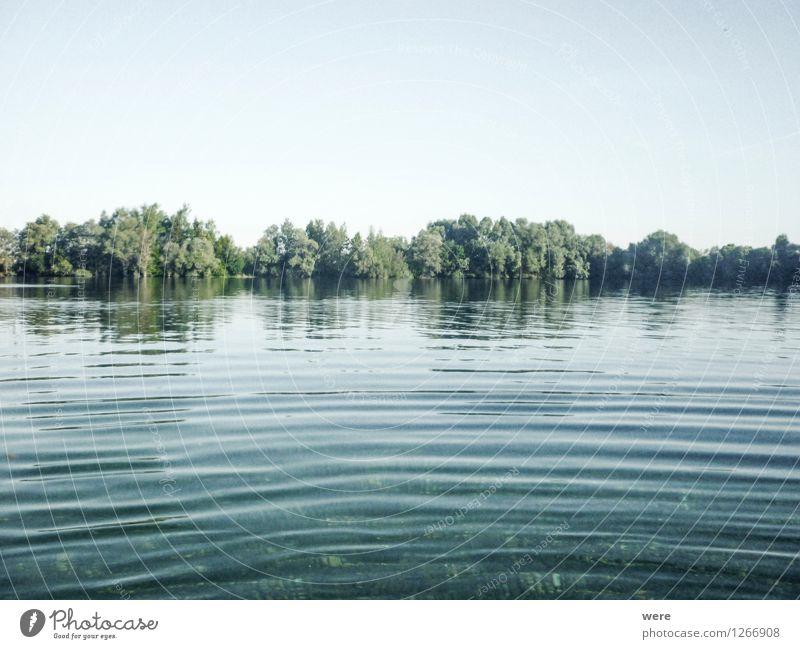 Morgenschwimmen Lifestyle Gesundheit sportlich Fitness Schwimmen & Baden Freizeit & Hobby Ferien & Urlaub & Reisen Sport Sport-Training Wassersport Bewegung
