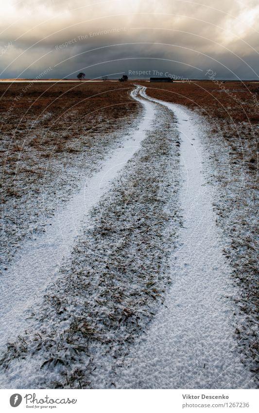 Weiße Straße unter dem Schnee auf einem Gebiet Himmel Natur Ferien & Urlaub & Reisen blau weiß Baum Landschaft Wolken Winter Wege & Pfade grau Horizont Frost