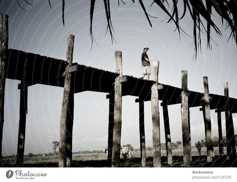 Brückblickend Myanmar Mandalay Teak Holz Holzbrücke Asien Schiffsplanken Tourist Mütze Bermuda-Inseln Sonnenbrille Brücke Mann u-bein taunghtaman Pfosten Himmel