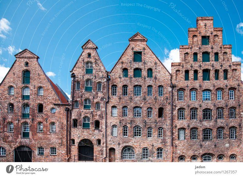 reihenhaus-idylle. Stadt Haus Wand Architektur Stil Mauer Fassade Wohnung Design Häusliches Leben elegant stehen Perspektive ästhetisch Neigung Vergangenheit