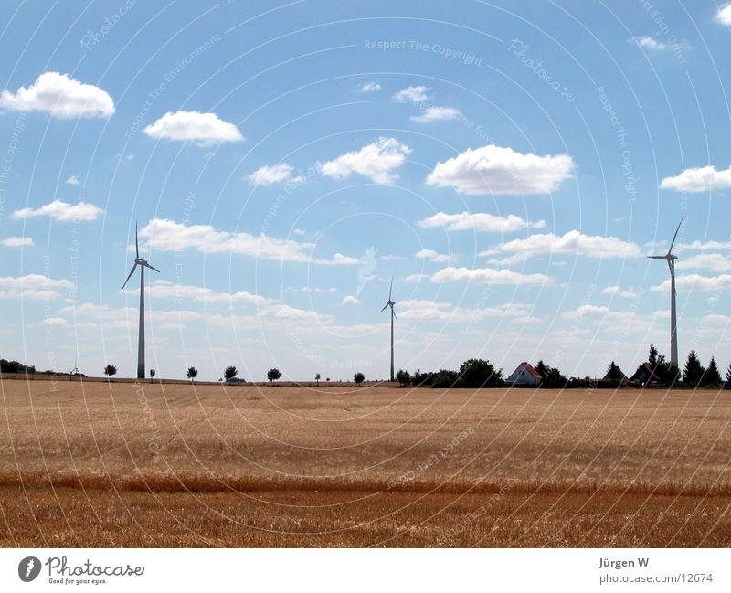 Drei Brüder Natur Himmel blau Sommer Wolken Feld Windkraftanlage Korn