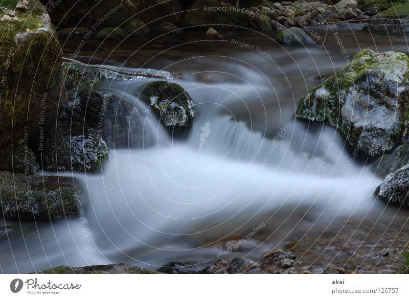 Weiches Wasser Wasser schön blau Wald kalt Berge u. Gebirge Landschaft weich Bach Wasserfall krumm himmelblau Schwarzwald Freiburg im Breisgau Schauinsland Mittelgebirge