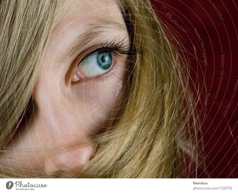 Blond deluxe Frau feminin blond Haare & Frisuren Haarwaschmittel Schleier rot verdeckt verpackt Wimpern Schüchternheit verträumt Denken Verschmitzt