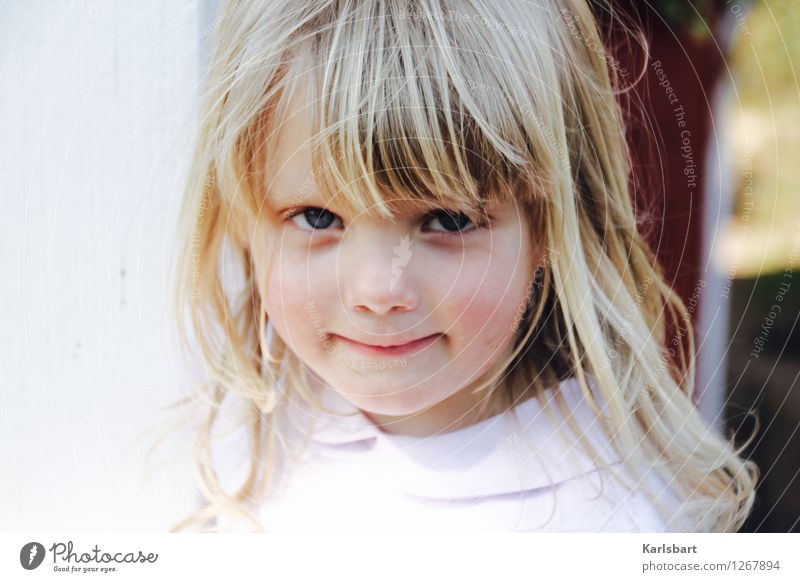 Weiße Rose Mensch Kind Natur Sommer Freude Mädchen Bewegung feminin Gesundheit Haare & Frisuren Garten Lifestyle Wohnung Häusliches Leben Kindheit blond