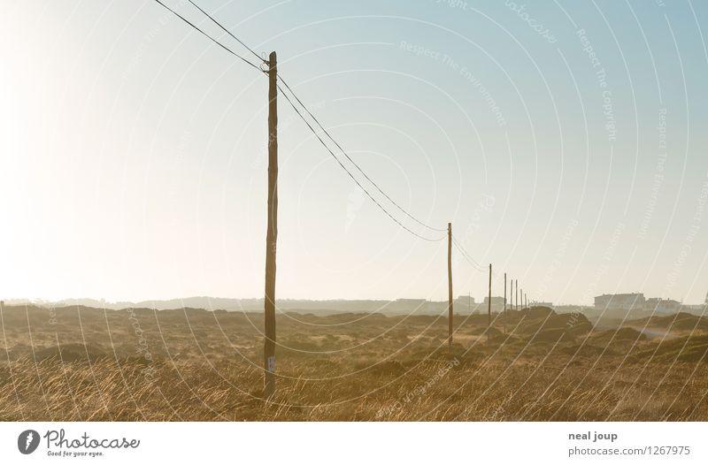 Telegraph Road Landschaft Himmel Wolkenloser Himmel Sonnenlicht Schönes Wetter Buschland Sagres Portugal Linie Telefonmast Denken Kommunizieren träumen wandern