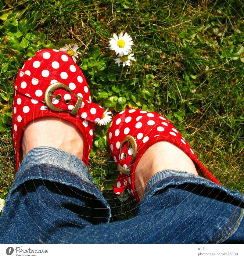In Her Shoes III Haut Sommer Frau Erwachsene Fuß Natur Pflanze Frühling Blume Gras Blüte Wiese Bekleidung Hose Jeanshose Schuhe blau grün rot weiß gehorsam