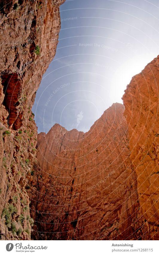 hohe Mauern Umwelt Natur Landschaft Himmel Wolkenloser Himmel Sonne Sonnenlicht Sommer Wetter Schönes Wetter Felsen Berge u. Gebirge Schlucht Todra-Schlucht