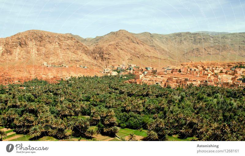Oase Marokko II Himmel Natur Stadt alt Pflanze blau grün Sommer Baum Landschaft Wolken Haus Ferne Wald Berge u. Gebirge Umwelt