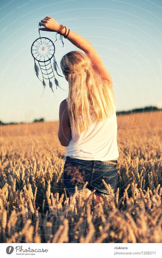 Träume festhalten Mensch Frau Natur Jugendliche Sommer Junge Frau Sonne Erholung Landschaft 18-30 Jahre Erwachsene Umwelt natürlich feminin träumen Feld