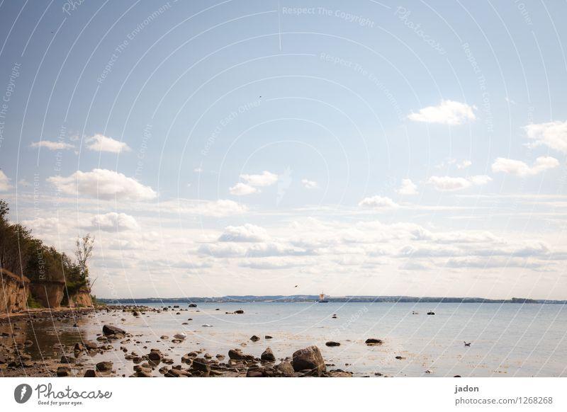 an der küste. Himmel Natur Ferien & Urlaub & Reisen Pflanze Sommer Wasser Baum Meer Landschaft Ferne Strand Umwelt Küste wandern Schönes Wetter Urelemente