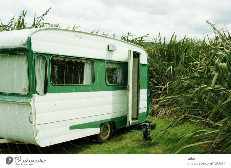 SWEET LITTLE HOME Neuseeland Wohnwagen grün weiß Campingplatz Gummistiefel Meer schön Strand Wohnzimmer p.b campervan alt flax my gumboots kleines zuhause
