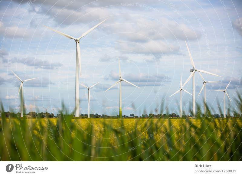 Landwirtschaft & Windkraftanlagen Himmel Natur blau grün Landschaft Wolken Umwelt Wiese Küste Horizont Energiewirtschaft Technik & Technologie Zukunft Industrie