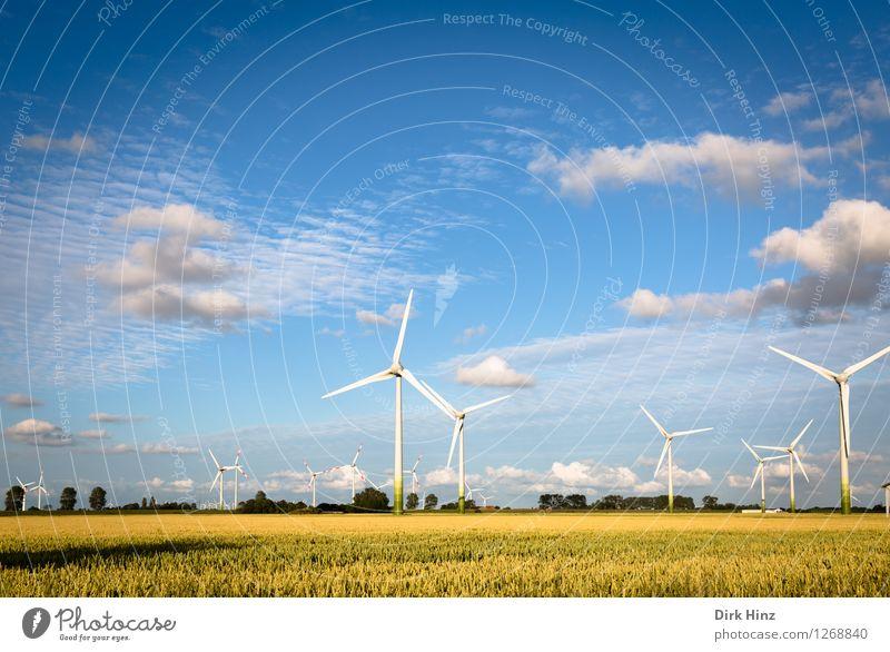 Windkraft und Landwirtschaft Technik & Technologie Wissenschaften Fortschritt Zukunft Energiewirtschaft Erneuerbare Energie Windkraftanlage Energiekrise