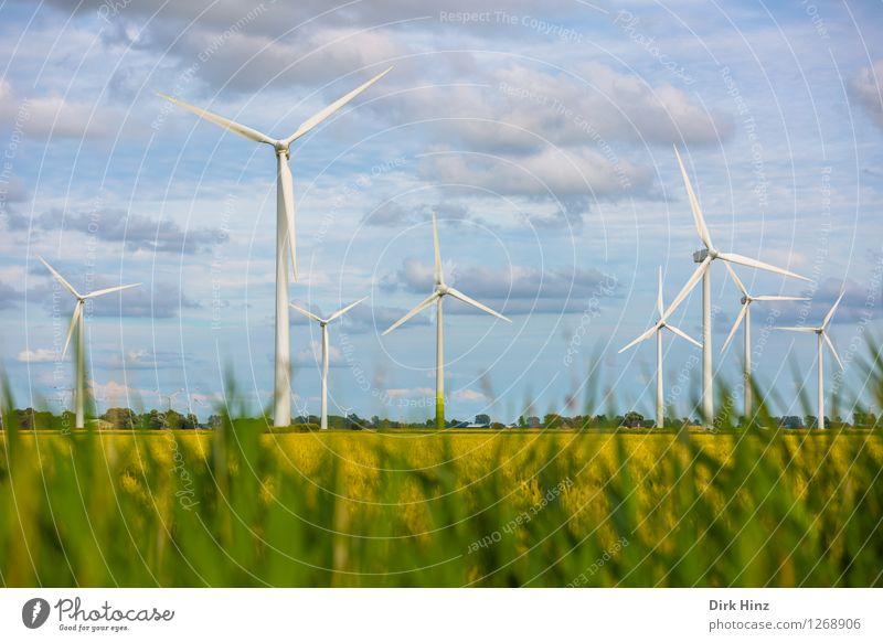 Windpark in Dithmarschen Technik & Technologie Wissenschaften Fortschritt Zukunft Energiewirtschaft Erneuerbare Energie Windkraftanlage Industrie Umwelt Natur