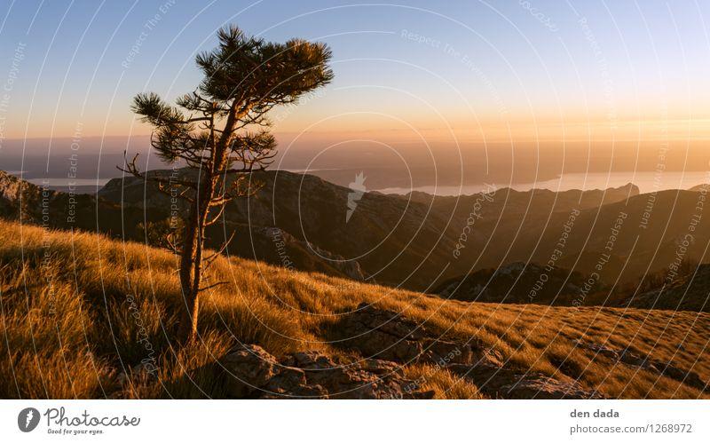 wandern in Paklenica Ferien & Urlaub & Reisen Tourismus Abenteuer Ferne Camping Sommer Berge u. Gebirge Landschaft Wolkenloser Himmel Felsen Velebit Gipfel