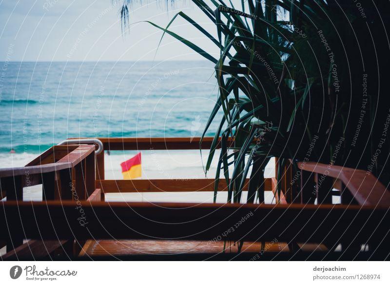 Weg zum Pazifik Strand auf auf einem schöne Holzsteg mit Geländer. Rechts davon ist Farn und im Hintergrund das blaue Meer. Design Wohlgefühl Sommer Natur