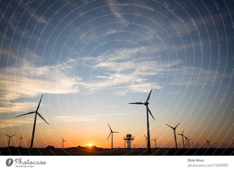 Windpark in Dithmarschen Himmel Natur blau Sonne Landschaft Wolken Umwelt Küste Horizont orange Energiewirtschaft Technik & Technologie Zukunft Industrie
