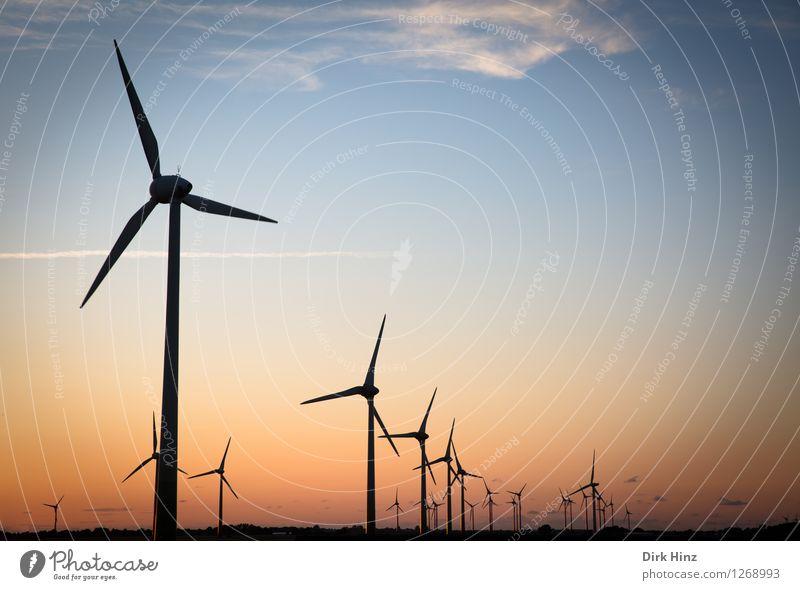 Windpark in Dithmarschen Himmel Natur blau Landschaft Umwelt Küste Horizont orange Energiewirtschaft Technik & Technologie Klima Zukunft Windkraftanlage